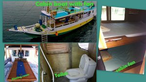 Cabin Boat with Fan