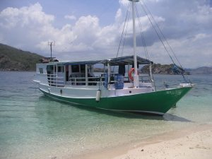 Local boat one day komodo tour