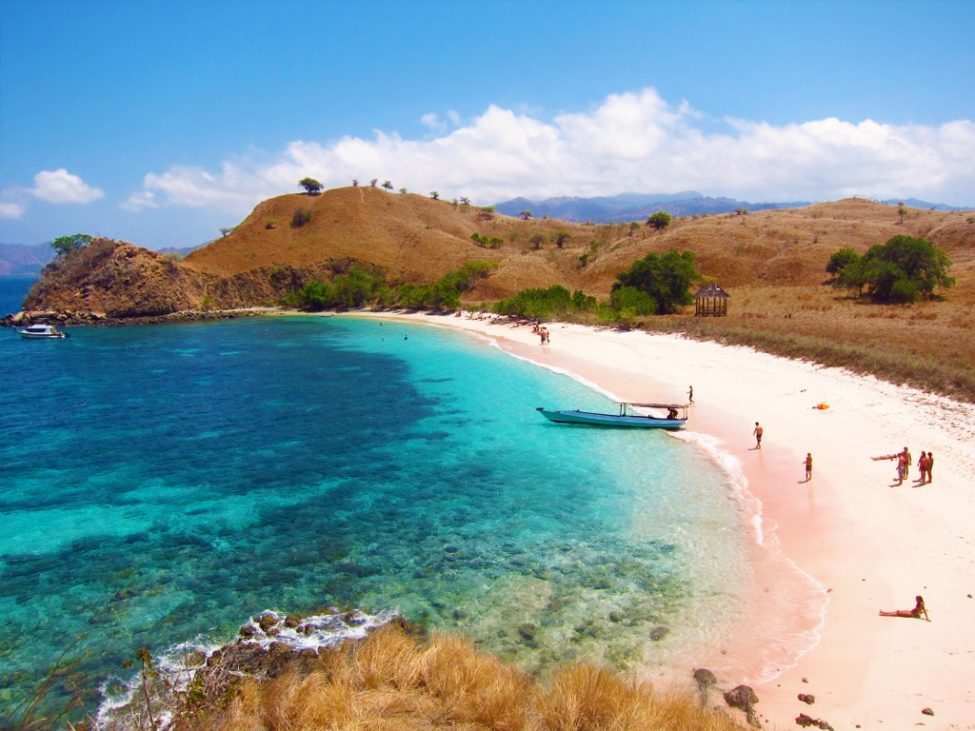 KOMODO ISLAND SHORE TOUR