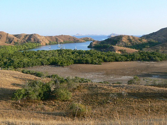 PRIVATE TOUR KOMODO TRIP 3DAYS/2NIGHT
