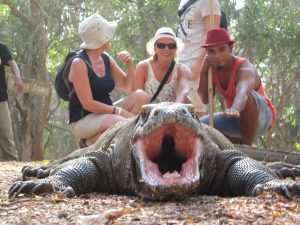 Trekking on Komodo island