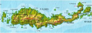 map of flores island